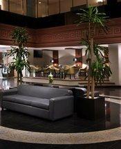 Hall Hotel Krystal Monterrey Monterrey